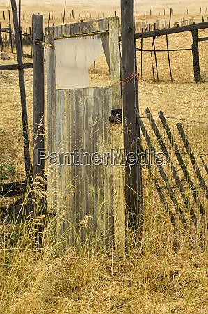 usa montana old door in homestead
