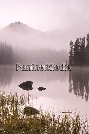 usa oregon willamette national forest foggy