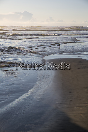 cannon beach oregon curvy tide comes