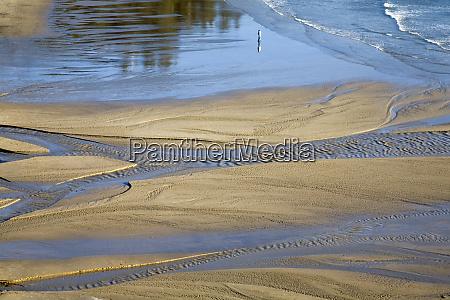 or oregon coast ecola state park