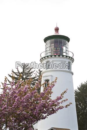 umpqua lighthouse state park near winchester