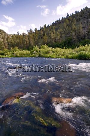 usa oregon deschutes river swift flowing