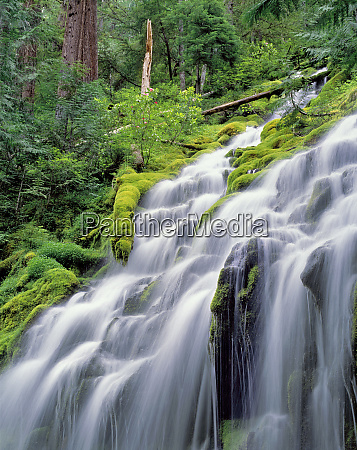 usa oregon proxy falls proxy falls