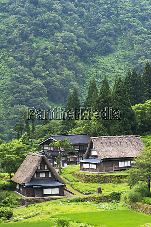 gassho zukuri houses in the mountain