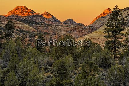 usa utah zion national park mountain