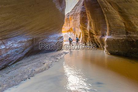 hiking in paria canyon vermillion cliffs