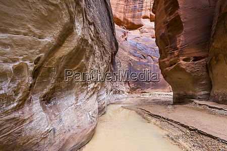 river in slot canyon paria canyon