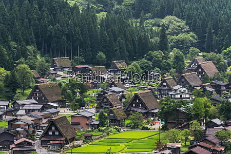 gassho zukuri houses and farmland in