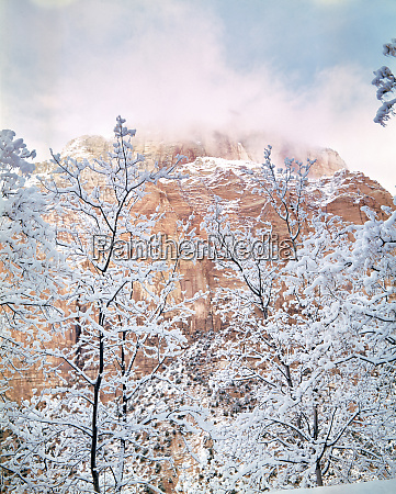 usa utah zion np snow covered