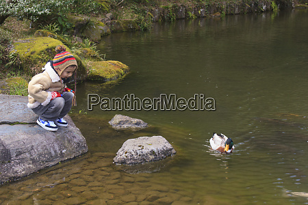a young boy watches a duck