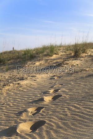virginia beach va usa footsteps