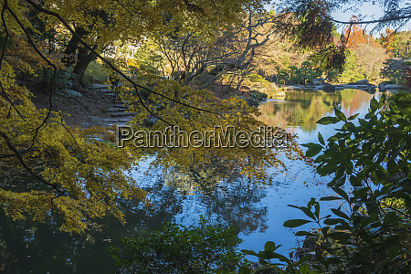 pond with autumn color reflections in