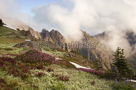 usa olympic national park clouds form