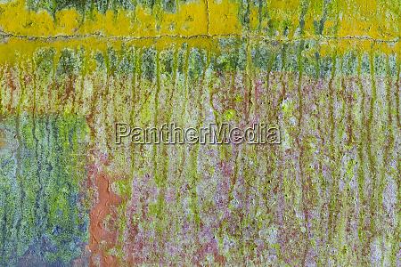 usa washington state fort hayden abstract