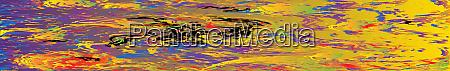 petrol rainbow web banner