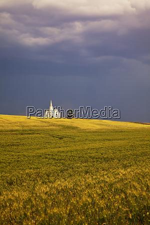 usa washington harvest time near the