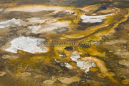 wy yellowstone national park upper geyser