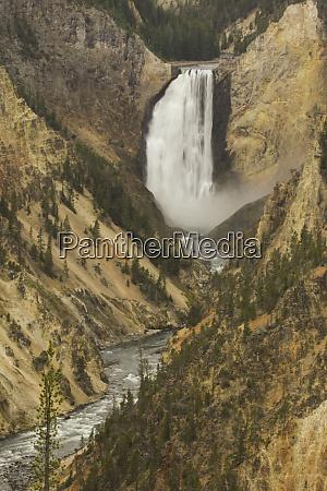 usa wyoming lower falls yellowstone national