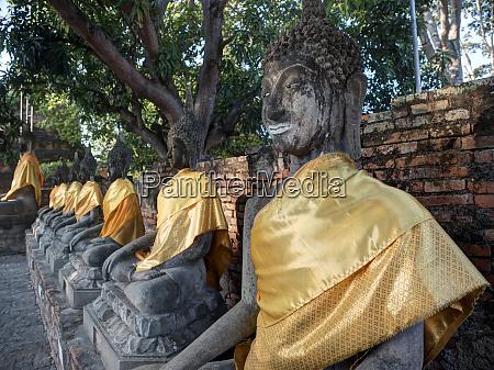 thailand ayutthaya rows of buddha draped