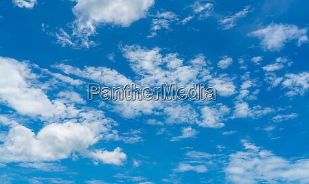 beautiful blue sky and white cumulus