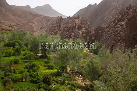 dade valley morocco dades valley gorge
