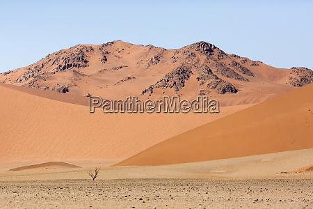 africa namibia namib naukluft park dead