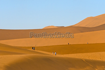 tourists hiking on red sand dune