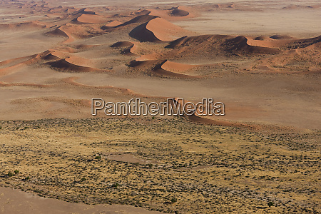 dried river with vegetation aerial view