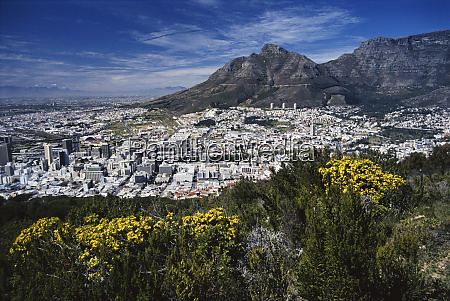 south africa cape town view of