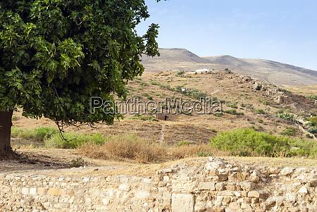 roman ruins of bulla regia tunisia