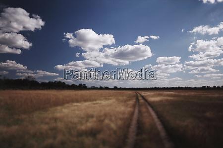 zimbabwe view of road near linkwasha