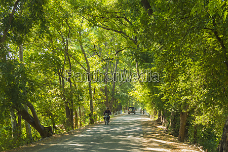 myanmar mandalay inwa shady road though