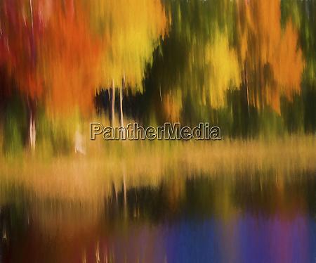abstract fall