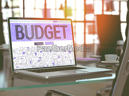 budget concept on laptop screen