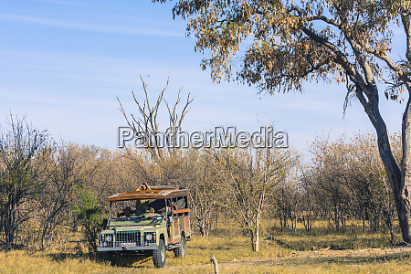 botswana okavango delta khwai concession safari