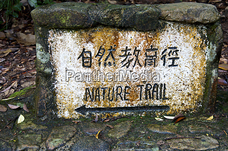hong kong tai po kau nature