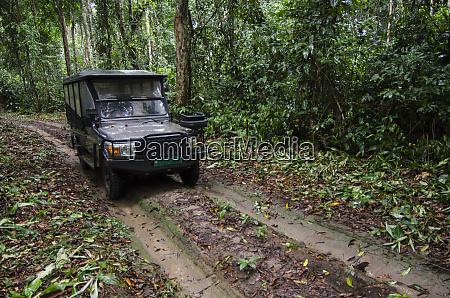 safari vehicle ngaga camp congo