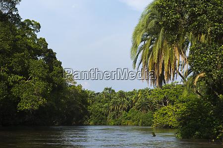 scenic lekoli river congo