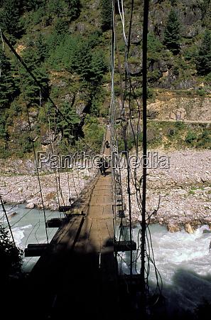 asia nepal yaks on bridge