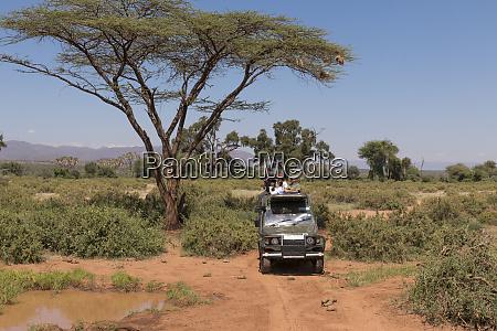 africa kenya samburu national reserve tourists