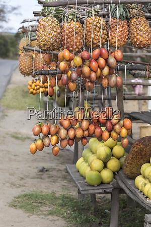 africa madagascar near antananarivo roadside fruit