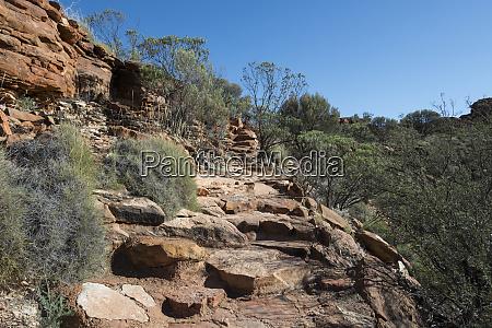 australia watarrka national park kings canyon