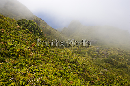 martinique french antilles west indies fog
