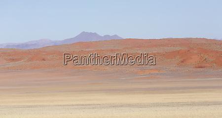 africa namibia namib desert orange desert