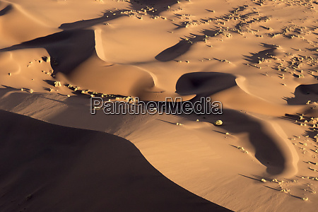 africa namibia namib naukluft park abstract
