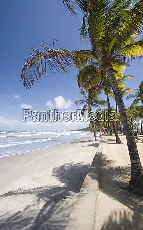 caribbean trinidad manzanilla beach