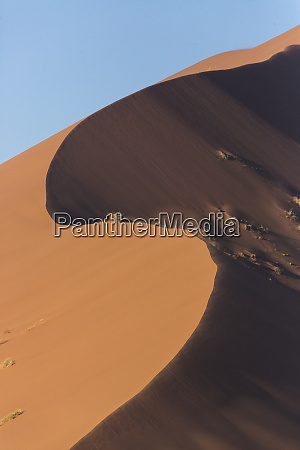 wind sculpted towering sand dunes of