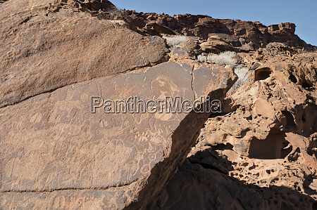 rock engravings depicting animals were made