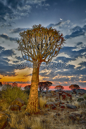 africa namibia keetmanshoop sunset in the