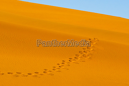 footprints on red sand dune in